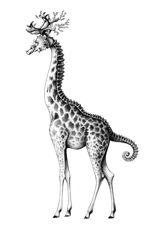 giraffuccio nero - Eleonora Casetta